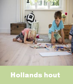 hollands_hout_su